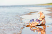 Fashionable women sandals and sunglasses on summer sandy wet coa — Stock Photo
