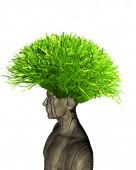 Ecologic life and thinking concept illustration — Stock Photo