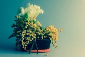 Bunch of flowers in a small wooden basket for women's day, retro revival. — Stock Photo