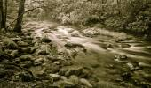 Serene Mountain Stream — Stock Photo