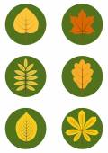 Vector set of flat icons of different autumn leaves. Eps 10. — Stock Vector