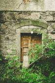 Old back door — Stock Photo