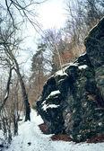Rocks in winter — ストック写真