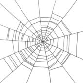 Spider Web hand-drawn on  isolated white background. Background — Stock Vector