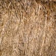 Golden hay background, bale, straw, haystack — Stock Photo #56828679