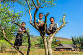 Unidentified ethnic children wearing nice ethnic costumes playing — Stock Photo