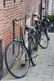 Black tradtional dutch bikes — Stock Photo