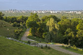 Park in the big city — Stock Photo