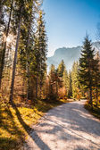 Autumn morning in the alps — Stock Photo