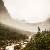 River down the mountain — Stock Photo