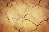Grunge dried ground — Stock Photo
