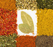 Spices macro decorated as frame with bay leaf inside isolated on — Stock Photo