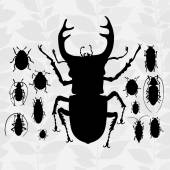 Contrast set with silhouette of bugs. — Stock Vector