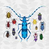 Bright set with colorful bugs. — Stock Vector