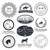 Perfect horse related business symbols with antique texture — Stock Vector
