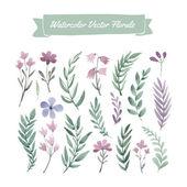 水彩の花と葉 — ストックベクタ