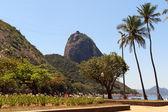 Mountain Sugarloaf square palm tree red beach, Rio de Janeiro — Stock Photo
