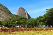 Mountain Sugarloaf with view of square General Tiburcio, Rio de  — Stock Photo