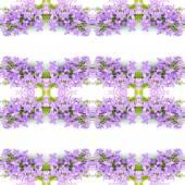 цветок фиолетовый цветок — Стоковое фото