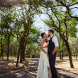 European bride and groom kissing in the park — Stock Photo #52969237