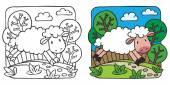 Little sheep målarbok — Stockvektor