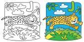 Little cheetah or jaguar coloring book. Alphabet J — Stock Vector