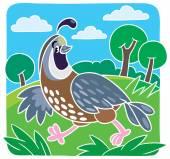 Children vector illustration of little quail — Stock Vector
