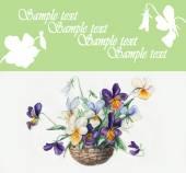 紫罗兰的花束. — 图库照片