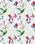 Seamless pattern of Sweet pea flowers. — Stok fotoğraf