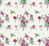 Seamless pattern of clover. — Stock Photo
