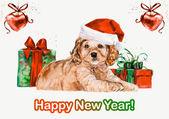 Spaniel. New year card. — Stock fotografie
