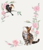 Kitten hunts on a birds. Pink roses frame. — Foto de Stock