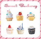 Set cupcakes. — Stockfoto