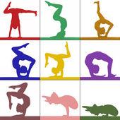 Woman practicing gymnastic yoga — Stock Photo