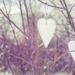 Two vintage hearts hanging on tree — Stock Photo #62635513