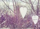 Two vintage hearts hanging on tree — Foto Stock