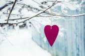 Heart shaped valentine's  hanging on the tree branch — Stock Photo