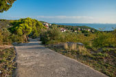 Foothpath to the hill on Murter island, Croatia — Stock Photo
