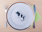 Beef meat concept — Stock Photo