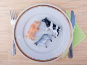 Eating meat concept — Стоковое фото