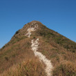 Hiking trail leading to the peak in Sai Kung, Hong Kong — Stock Photo #60294325