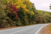 秋の道 — ストック写真