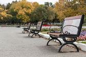Lavičky pro odpočinek na podzim ulice — Stock fotografie