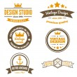 Retro Vintage Insignias or Logotypes set. Vector design elements, business signs, logos, identity, labels, badges and objects — Stock Vector #76756485