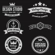 Retro Vintage Insignias or Logotypes set. Vector design elements, business signs, logos, identity, labels, badges and objects — Stock Vector #76756561