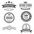 Retro Vintage Insignias or Logotypes set. Vector design elements, business signs, logos, identity, labels, badges and objects — Stock Vector #76756603