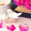 Figurines wedding doves in love Valentine bouquet of pink roses on old books floral background is love tenderness vintage retro selective soft focus — Stock Photo #74238183
