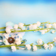 Gentle blue the background fabric heart Lily of the valley selective soft focus toned photo love tree Valentine — Stock Photo #74251227