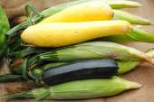 Fresh Organic Harvested Veggies From a Home Garden — Stock Photo