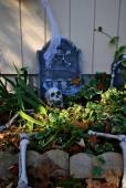 Skeleton Halloween Decorations in a Garden — Stock Photo